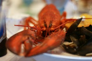 Top 5 Restaurants Chatham, Cape Cod